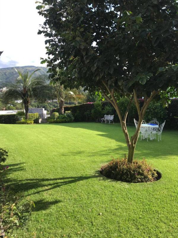 Jardín casa Santa Inés