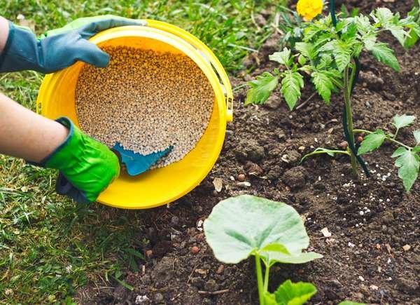 No excederse con el fertilizante