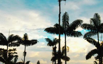 Hacienda Los Bancos – La Florida