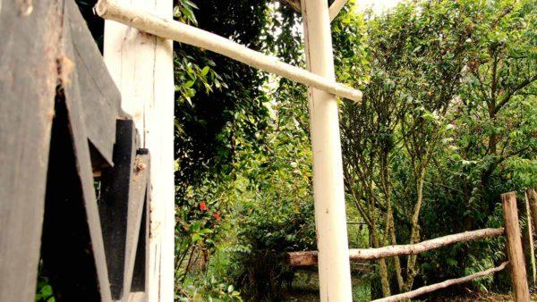 Hacienda Cotacachi Garden
